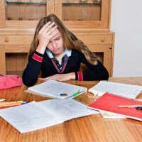 Mock exams